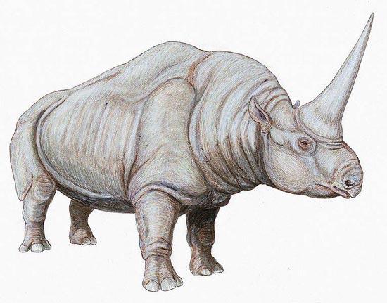 dinosaurushidupafrika4