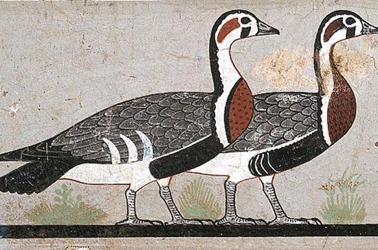 foto: www.historyforkids.net