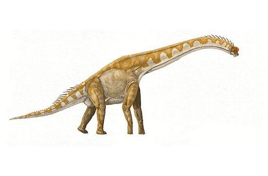 dinosaurusterbesar10