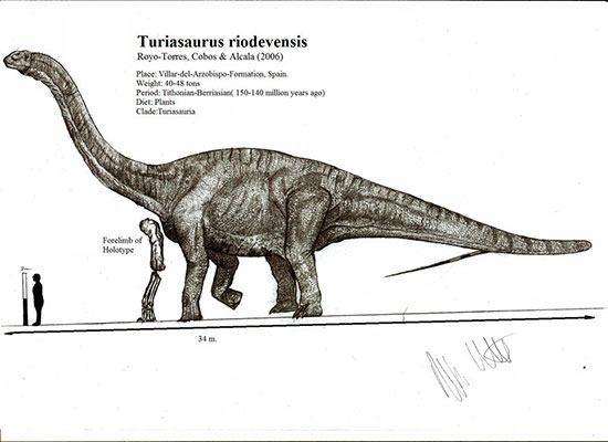 dinosaurusterbesar7