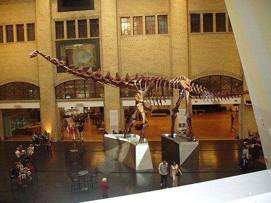 dinosaurusterbesar9
