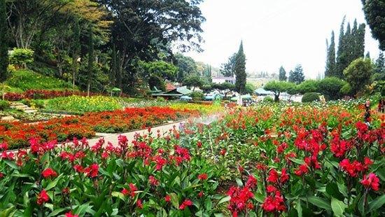 Inilah 10 Taman Bunga Di Indonesia Yang Wajib Anda Kunjungi - Tentik