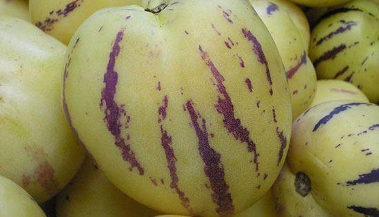 buahaneh3
