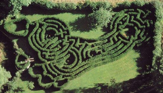 labirinterbaik8
