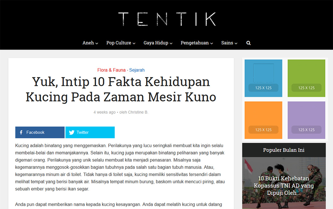 tentik-iklan-article