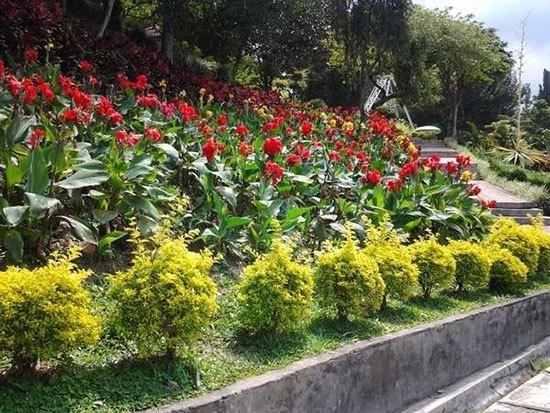 Inilah 10 Taman Bunga Di Indonesia Yang Wajib Anda Kunjungi Tentik