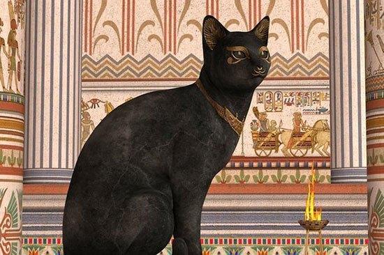 kucingmesirkuno10