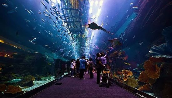 akuariumterbesar2